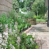 the process of creating or redesigning your garden no matter how small or large starts here
